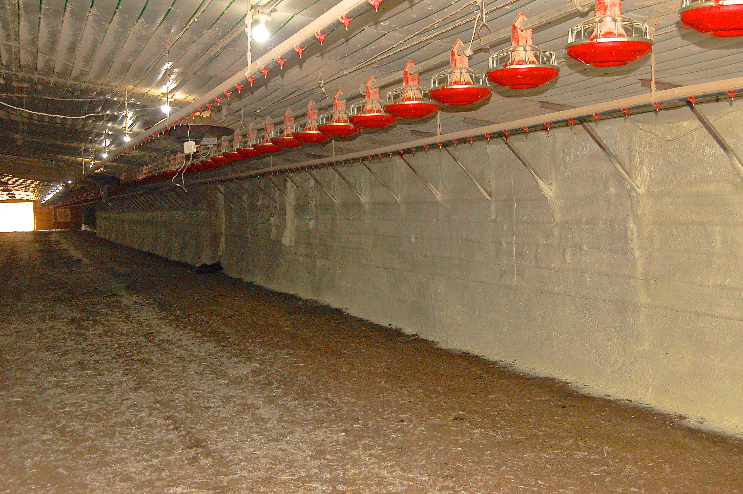 Rural Kentucky Poultry Barns Get New Life With Help From